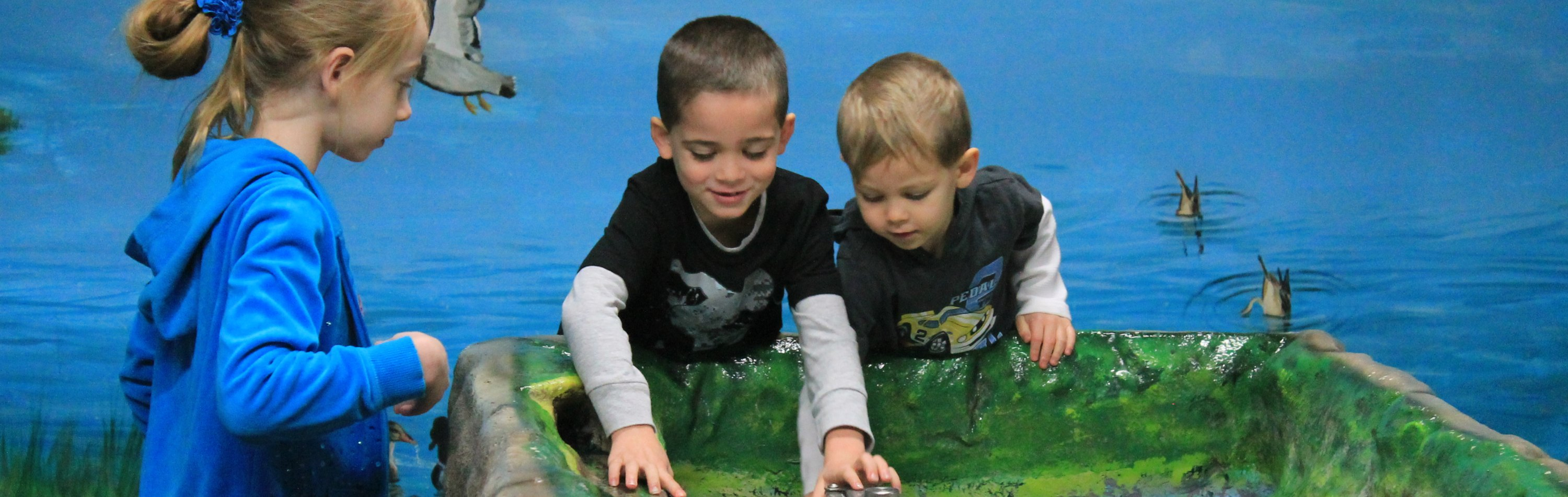 non-profit organizations & child care providers | groups | children's museum of la crosse | funmuseum.org